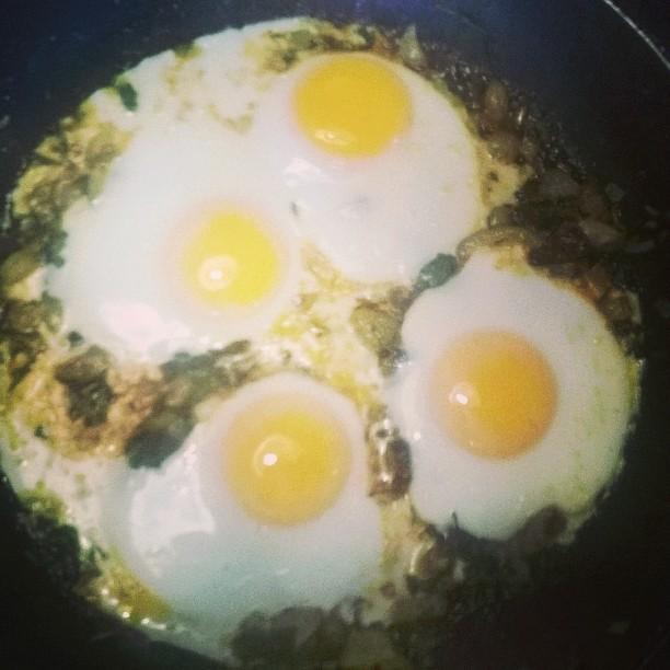 pittige eieren voor ontbijt of lunch